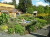 Prunkande trädgård