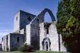 S:t Trinitatis kyrkoruin - Drotten
