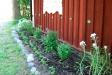 Växtutställning! Vackra broderade dukar på borden!