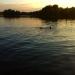 Bälingesjöns Camping