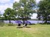 Njutbar plats vid Långsjön.