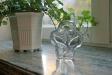 För mig symboliserar dessa unga ekplantor vid fönsterspringan hela det nya andaktsrummet.