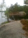 Barrskogsstig mot udde på södra standen