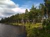 Bild tagen från udden nära hundbadet upp mot campingen