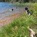 Grindsjön