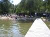 Trångt i vattnet. Juli 2008.