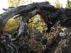 Trollforsen Camping Gargnäs