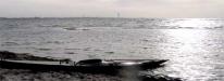 Södra stranden vid Lomma hamn