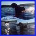 Lomsjöns bad