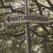 Ågesta Naturistbad, Magelungen