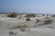 Mälarhusens inbjudande breda sandstrand
