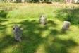 Olika typer av gamla gravstenar och gravkors