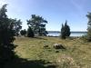 Ramsö Naturistbad