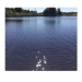 Svartasjön
