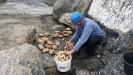 Har varit och fiskat krabbor kokat och käkat lite ute på klipporna