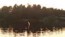 Solnedgång denna magiska septemberkväll 2016. Solens strimma som en eld i vattenspeglingem