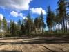 Bjurholms Camping