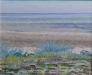 Stranden enligt Sezaki