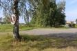 En ensam livboj hänger på ett träd vid parkeringsplatsen