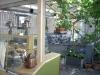 Café Växtvilja