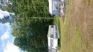 Fin Lövskog jämte campingen