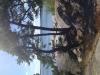 Oxnö klippbad