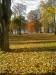Visst är hösten vacker !?