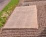 Hällen över Kisa-Mors grav