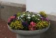 Blomsterprakt vid kyrkoporten.