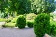 Kyrkogården är så här års lummig och grön.