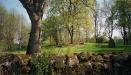 Ljunghems ödekyrkogård - Föregångaren till Vretens kyrka