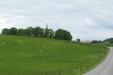 Pastoralt landskap