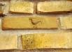 Örnen. Nederst: Jesus döpes av Johannes.