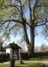 Kyrkogårdsmuren