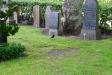 En nyfiken fågel på kyrkogården.