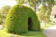 Inuti busken finns en gravsten