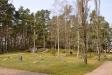 Kyrkogården har utökats in i en ljuvlig skogsbacke