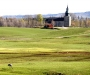 1 maj 2012. Några tranor finns kvar vid Bjurums kyrka