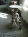 Dopbordet med sittande putto
