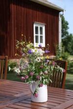 Bild från Lasätter Gård