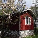 Bild från Lilla Huset på Slätten B&B
