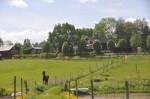 Bild från Segergården Lodge