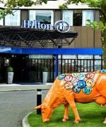 Bild från Hilton Amsterdam Airport Schiphol